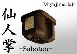 Cellule MC Miyajima Saboten